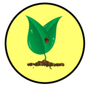 growing seedling icon